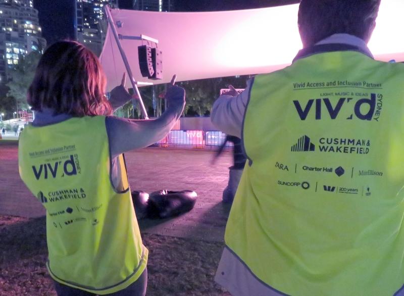 vivid volunteers